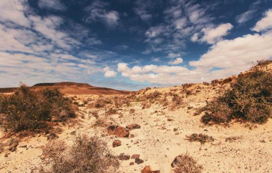 24 Acres in Arid County, AZ